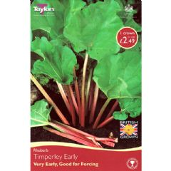 Rhubarb Timperley Early 1 Crown