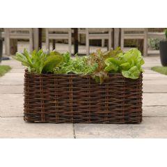 Image of Burgon & Ball Natural Willow Salad Planter