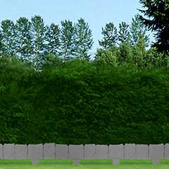 Greenfingers Stone Finish Garden Edging - Large