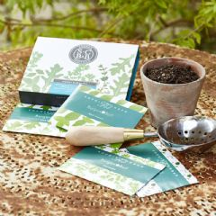 Burgon and Ball Sophie Conran Herb Garden Garden Seed Set
