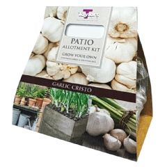 Patio Allotment Collection - Garlic Christo - 2 Bulbs