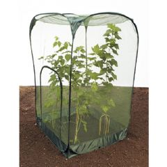 Pop Up Crop Cage with Door - W100 x D100 x H185cm