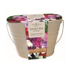Sweet Pea Oval Indoor Planter