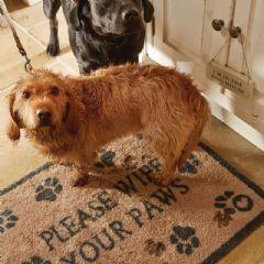 Image of Hug Rug Pet Paws Indoor Doormat - 65cm x 85cm
