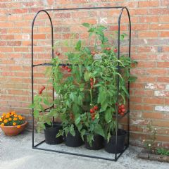Image of Haxnicks Tomato Frame & Support