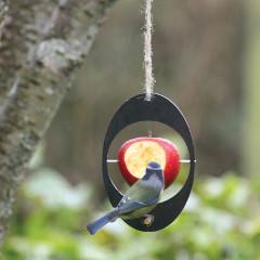 Eco Bird Feeder - Apple Feeder