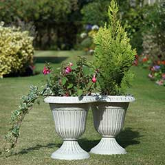 Urn Planters 2 Pack - White Gold Wash