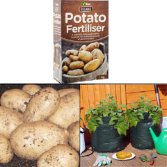 Majestic Potato Growing Kit - Majestic Seed Potatoes Fertiliser and 2x Growbags