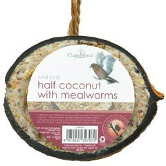 Chapelwood Coconut Half Filled with Suet and Mealworms