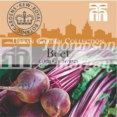 Urban Seed Collection - Beet Cardeal F1
