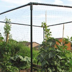 Botanico Fruit Cage 1.2m x 1.6m x 2m