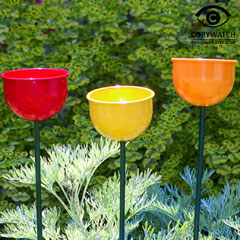 Colour Cup Bird Feeder