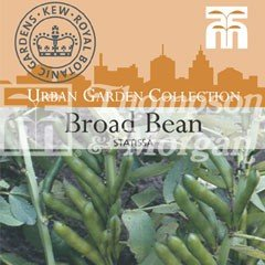 Urban Seed Collection - Broad Bean Statissa