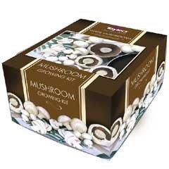 White Button Mushroom Kit