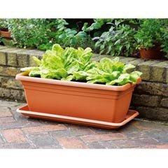 Deep Trough Planter - 60cm