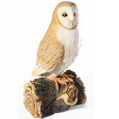 Tom Chambers - Cliff The Barn Owl