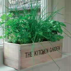 Unwins Mediterranean Kitchen Garden Herb Kit