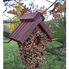 Hanging Bird Feeder - Seed Filled