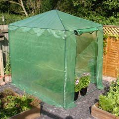 Botanico Pop Up Walk In Greenhouse