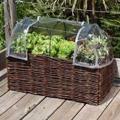 Burgon and Ball - Salad Planter Greenhouse Cover