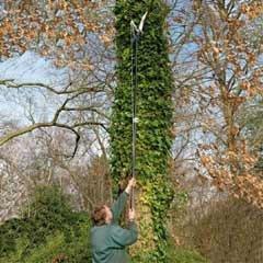 Spear & Jackson 4930 Razorsharp Telescopic Tree Pruner