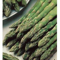 Asparagus Gijnlim - 2 Crowns