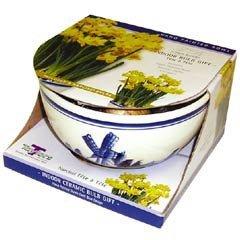 Autumn Bulbs - Delft Bowl - T