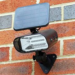 Thea LED Solar Garden Spotlight