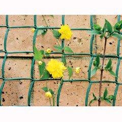 Climbing Plant Support 5m x 0.5m