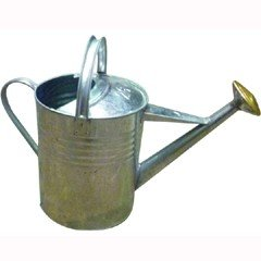 Metal Watering Can 9 Litres