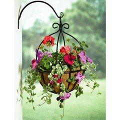 Tom Chambers Spanish Hanging Basket