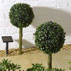 Smart Solar Topiary Privet - Set of 2