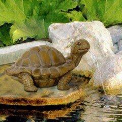 Bermuda Tortoise Spitter