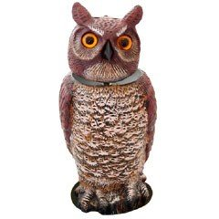 Bird Deterrent - Owl with Spinning Head