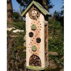 FSC Big Bee and Bug Biome