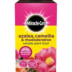 Miracle-Gro Azalea Camellia & Rhododendron Soluble Plant Food 1kg