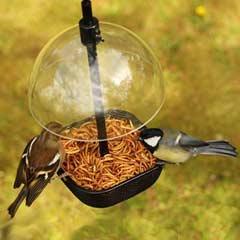 Chapelwood Mealworm & Suet Pellet Bird Feeder