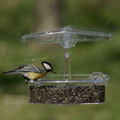 Jacobi Jayne Observer Window Wild Bird Feeder