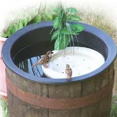 Jacobi Jayne Bird Bath Raft