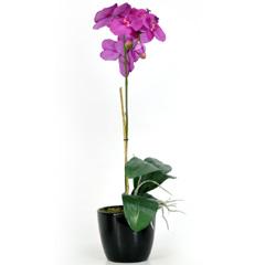 Artificial Purple Orchid Phalaenopsis Plant in Black Ceramic Pot - 1 Stem