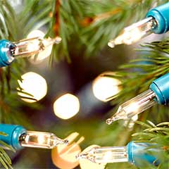 Christmas Classic Fairy String Lights 80 - Clear / Green Cable