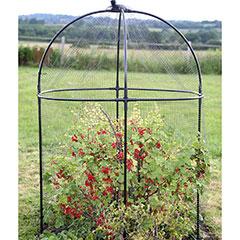 Haxnicks Steel Round Fruit Cage - 150cm