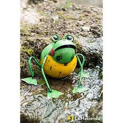 La Hacienda Frankie the Frog - 29cm Width