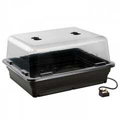 Essentials Electric Propagator - 52cm x 42cm