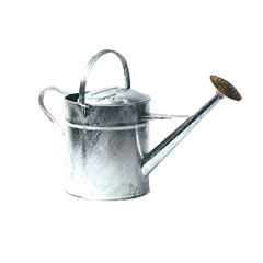 Image of Ambassador Galvanised Watering Can
