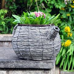 Wicker Teapot Planter