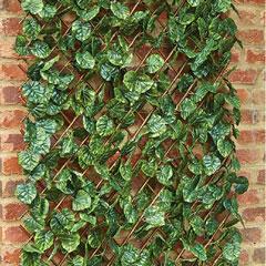 Lime Leaf Trellis - 30cm x 180cm