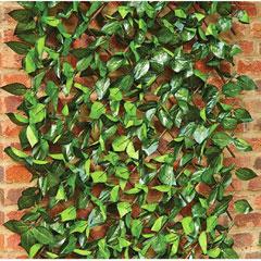 Birch Leaf Trellis - 90cm x 180cm