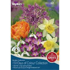 Taylors Autumn Bulbs 150 Days of Colour Collection - 50 bulbs