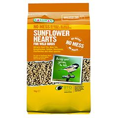 Gardman Sunflower Hearts For Wild Birds - 1kg